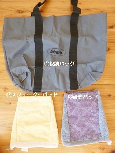 sharkP1020760